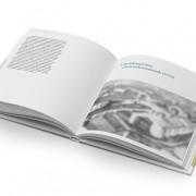 BUCH: Volkswagen AG – »Ivan Hirst …«